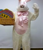 Easter Rabbit costume
