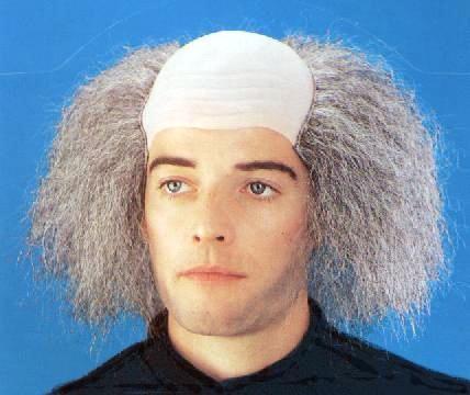 Einstein Wig Bald Creative Costumes