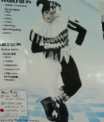 costume_adult_harlequin_deluxe