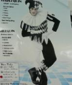costume_adult_harlequin_deluxe