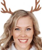Deer antlers purchase