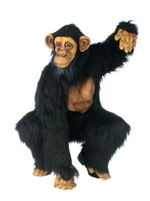 chimp costume