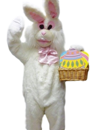 Easter Rabbit ccostume