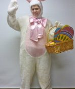 Rabbit costume