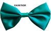 irish bow tie