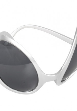 silver space glasses