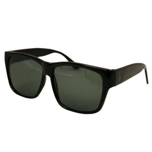 the blues brothers glasses
