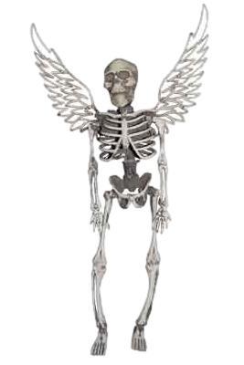 Mini skeleton with wings