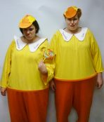alice in wonderland tweedle dum dee dumb twins