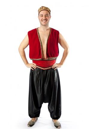 Aladdin costume