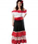 spanish mexican senorita costume