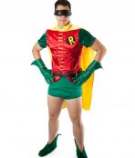 Original robin costume