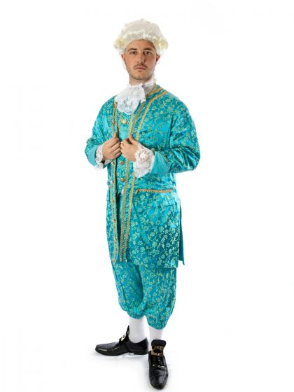 kind Louis courtier costume