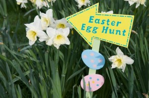 how to have easter egg hunt