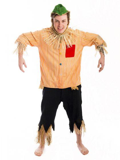 Wizard of Oz Scarecrow Costume