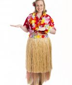 Hawaiian Luau Girl Costume