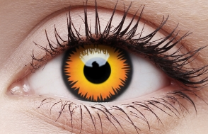 Colroed Contacts lens orange wolf