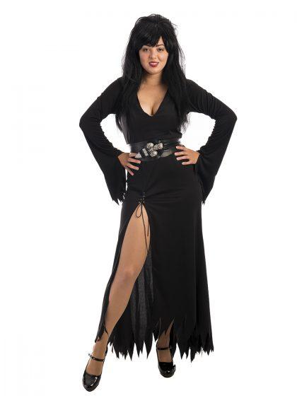 Elvira, Mistress of the dark, Halloween costume, witch, vampire