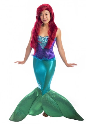 Ariel Little Mermaid Costume, Ariel Little Mermaid, Princess Ariel Costume, Little Mermaid Costume, Mermaid Costume
