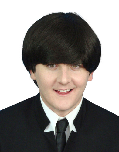 Dark brown mens wig