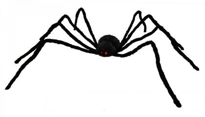 Jumbo Hairy Black Spider with Light Up Eye